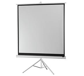 celexon Economy projectiescherm op statief 184 x 184 cm